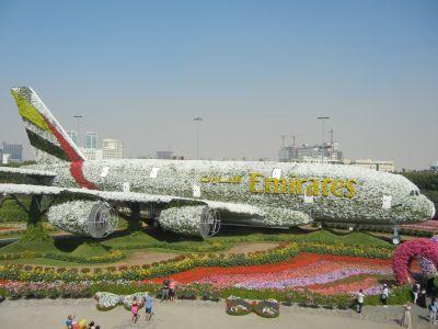 Самолёт из цветов